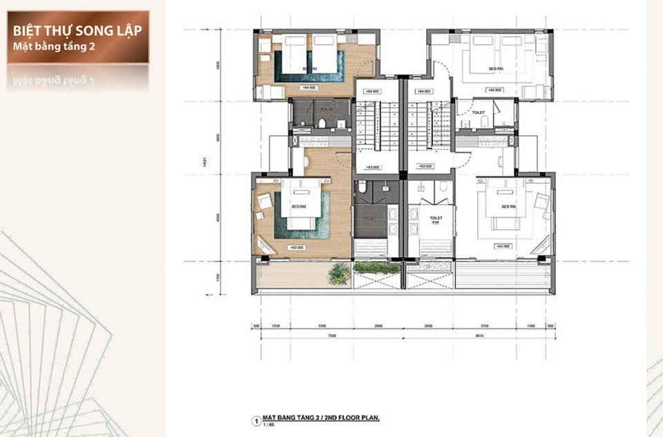 Thiết kế chi tiết biệt thự song lập